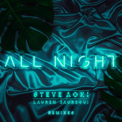 Cover - Steve Aoki - All Night Remixes
