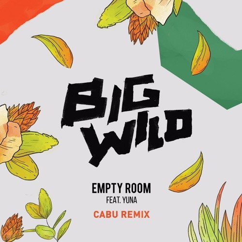 Cover - Big Wild - Empty Room (Cabu Remix)